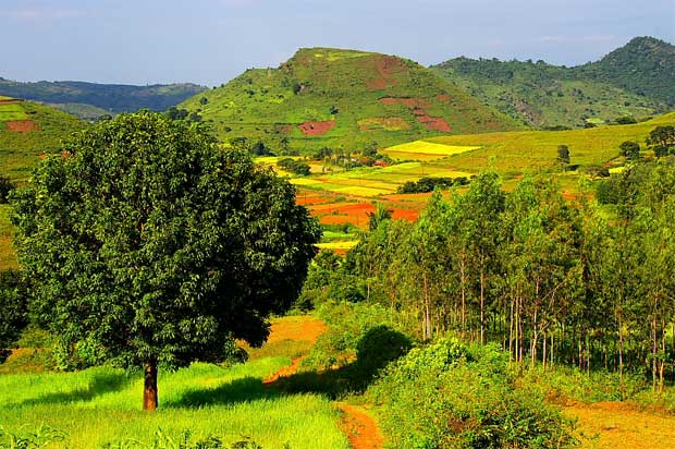 araku valley essay