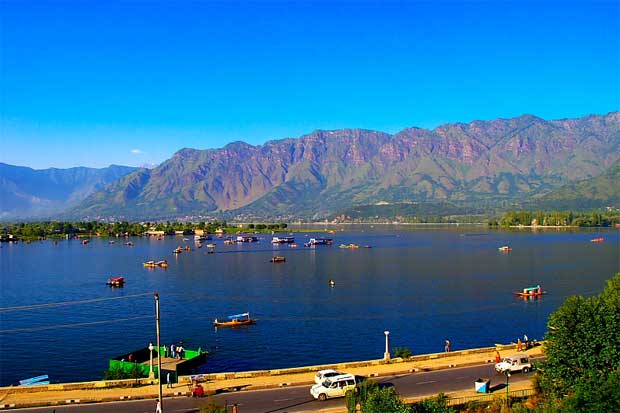 Tourist spots at srinagar for local one day tour