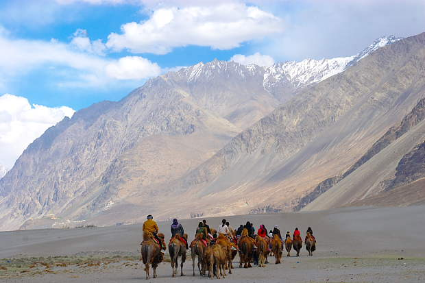 Image result for Nubra Valley