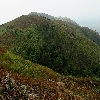 Hills of Gopalaswamy Betta