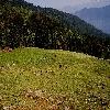 Giangad to talhouti trekking