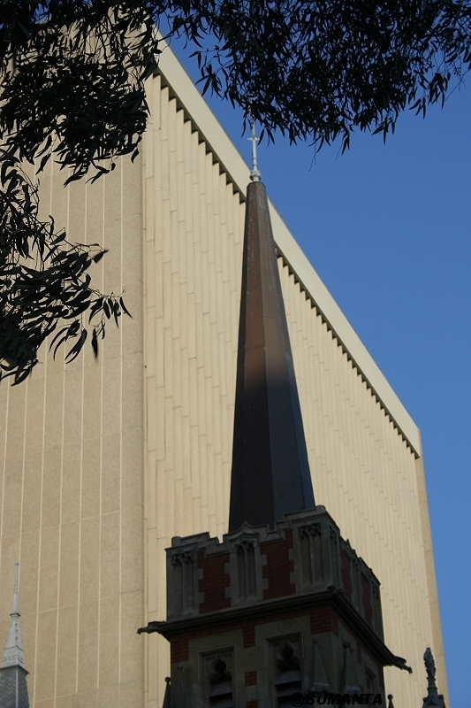 Perth architecture mingled with nature for Architecture firms perth