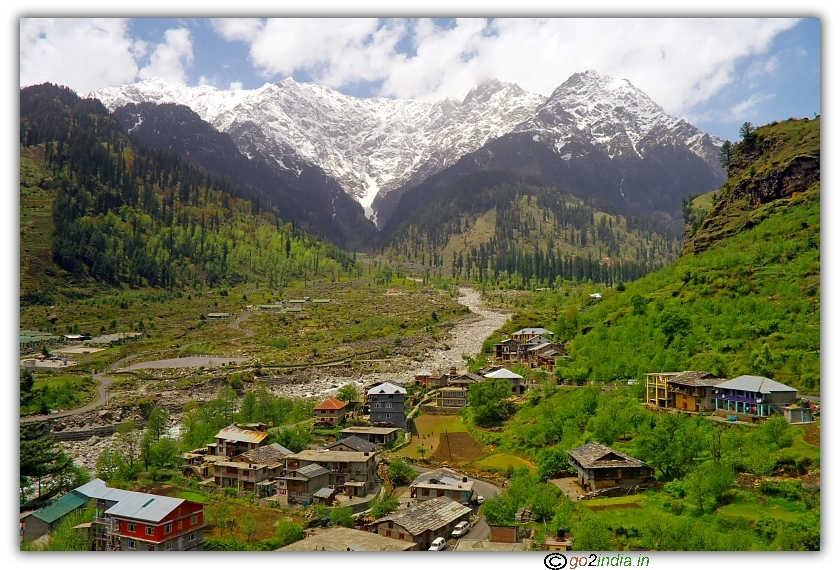 houses surrounding greenery with snow peak at bachground at Manali