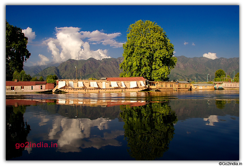More Houseboats in Dal Lake
