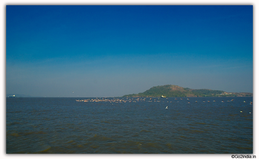 Elephanta Caves  distance view